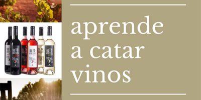 Bodegas Covilor te enseña a catar vinos